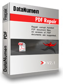 Click to view DataNumen PDF Repair screenshots