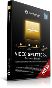 SolveigMM Video Splitter 5 - Business Edition