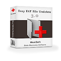 Easy FAT File Undelete Business License