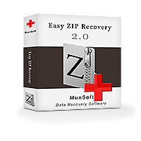 Easy ZIP Recovery Business License