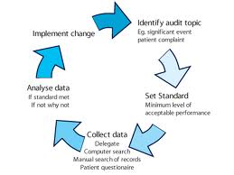 ISO 9001 Internal Audit Software