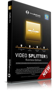 SolveigMM Video Splitter Portable 5 - Business Edition