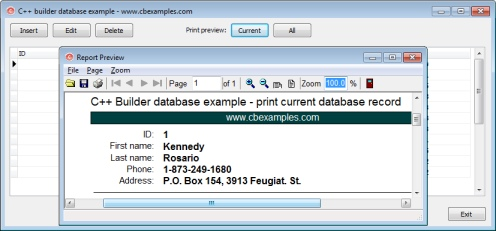 C++ Builder database printing example Screen shot