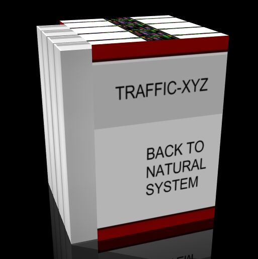 Click to view Traffic-xyz - Traffic congestion solution Ebook password screenshots