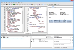 XML ValidatorBuddy 5.x Screen shot